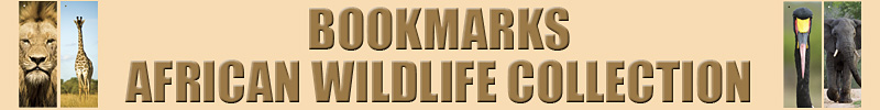 African Wildlife Collection Bookmarks